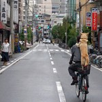Dog and bike in Japan