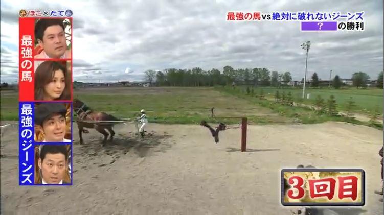 Horse v Jeans 2