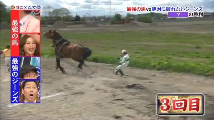 Horse v Jeans 3