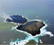 Fusion Island 1