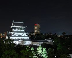 Light Up Your Own Japanese Castle