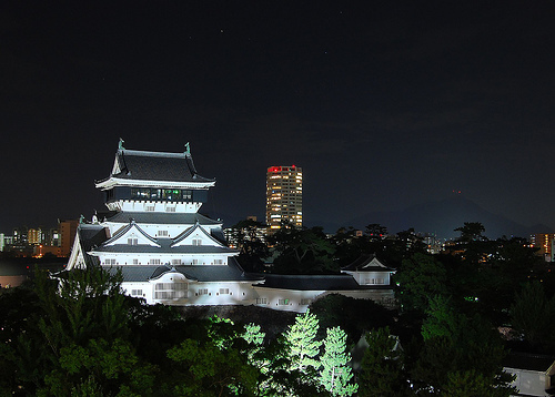 Light Up Your Own Japanese Castle 2