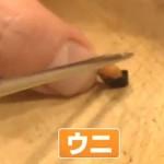 The Japanese Mini Sushi Diet - Guaranteed Success 2
