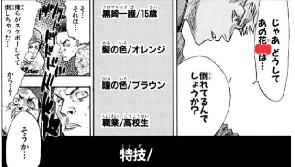Japan Manga Quiz 9d - Bleach